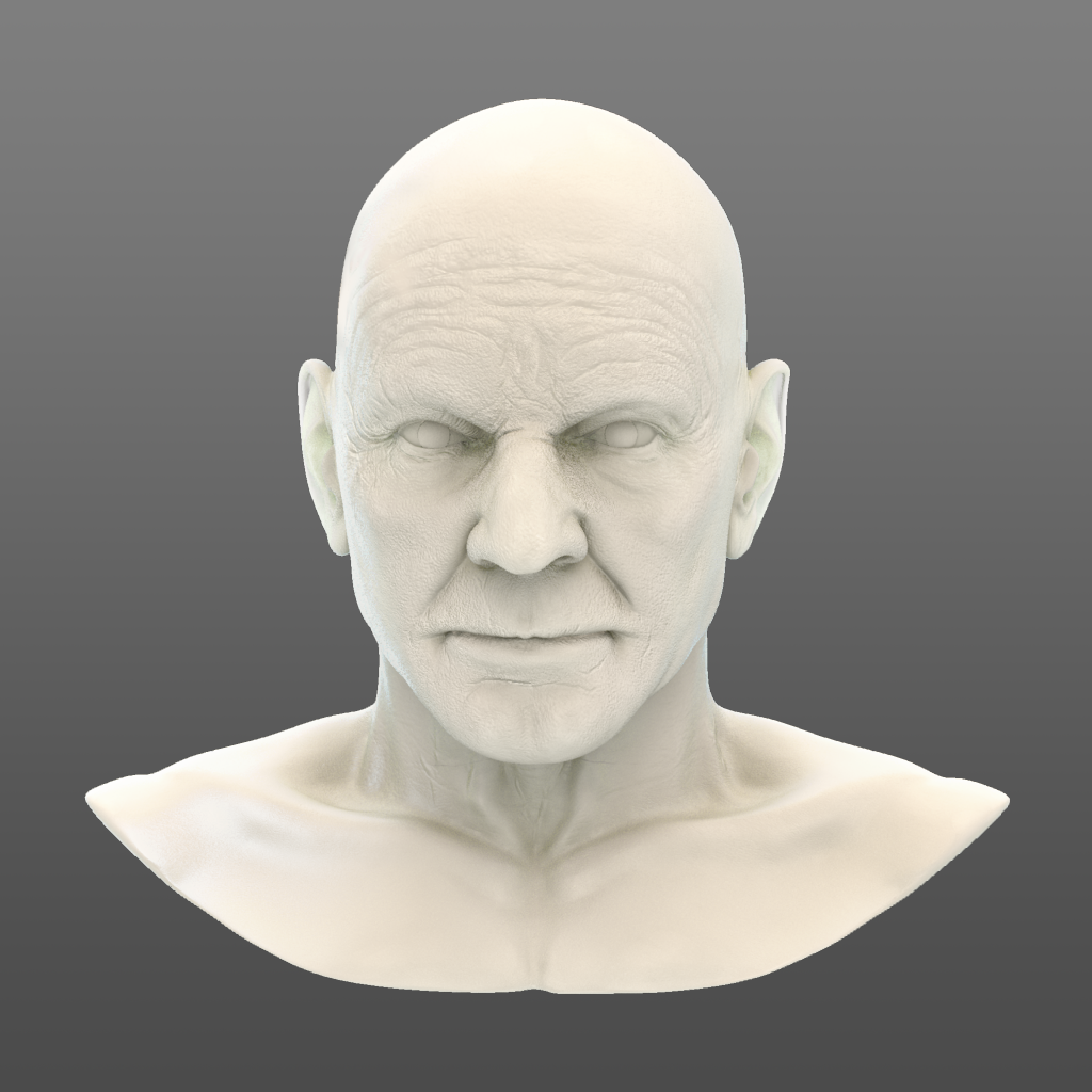 ps_bust_021