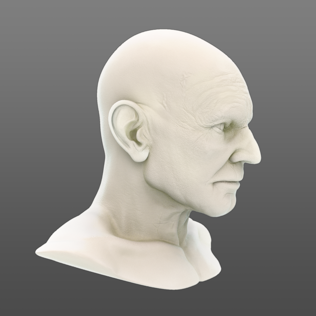 ps_bust_041